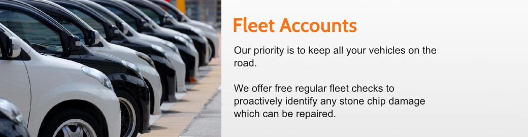 Fleet Accounts